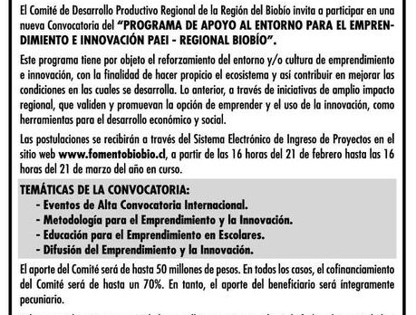 Convocatoria PAEI Regional Biobío (Elsur.cl)