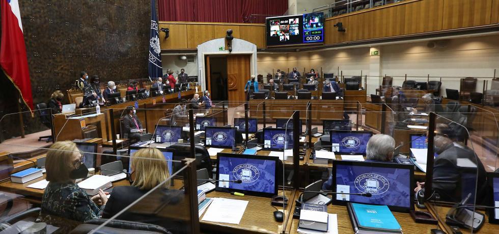 Senado aprobó en particular proyecto que perfecciona la ley de regionalización